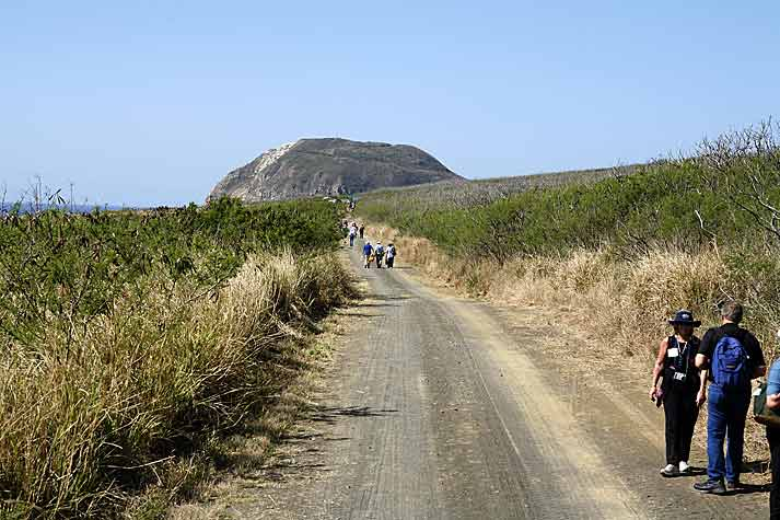 Road to Mt. Suribachi